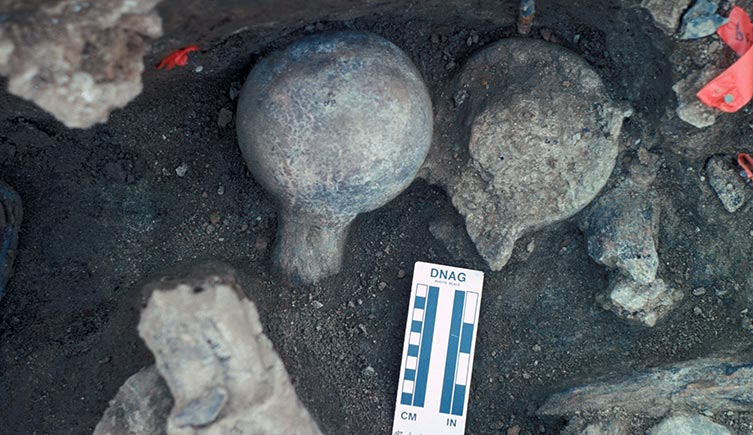 Two mastodon femur balls at excavation site