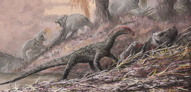 Early reptile fossil discovery gives clues to dinosaur evolution