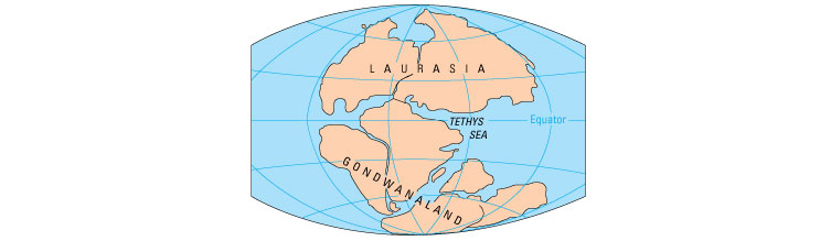 Palaeogeographic reconstruction of the world in the Triassic Period