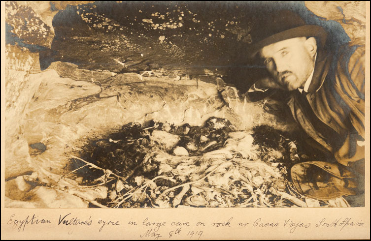 Gerald Tomkinson with a vulture nest
