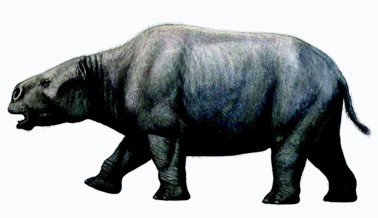 Artist impression of a Toxodon