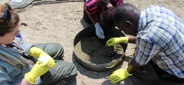 Experts collecting samples in Tanzania