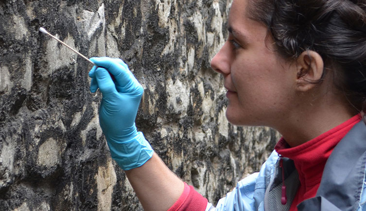 Person sampling microscopic life on a wall for the Microverse project