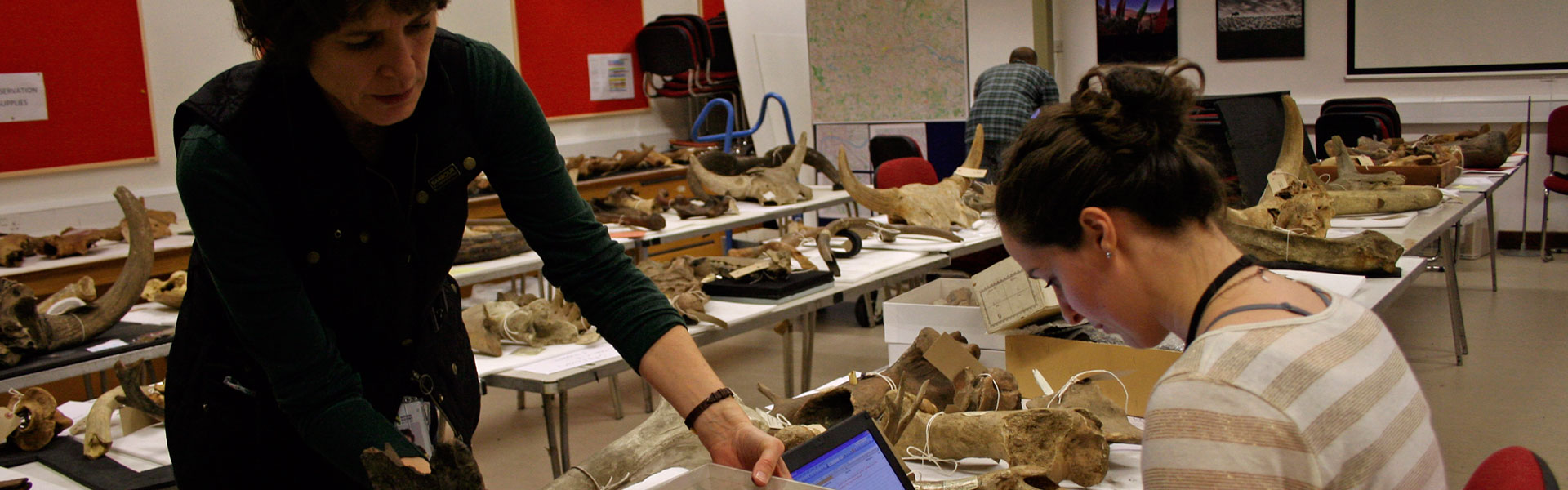 Volunteers on the Behind the Seen programme digitising fossil data