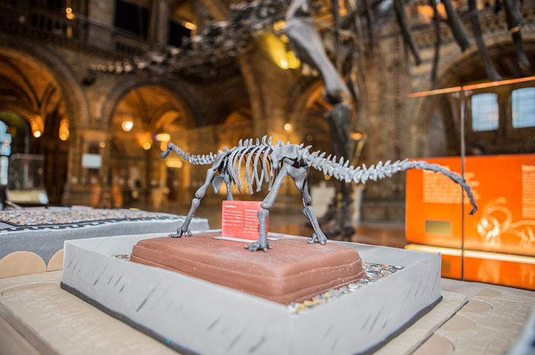 Photo of a cake version of Dippy with the real, large version visible in the background