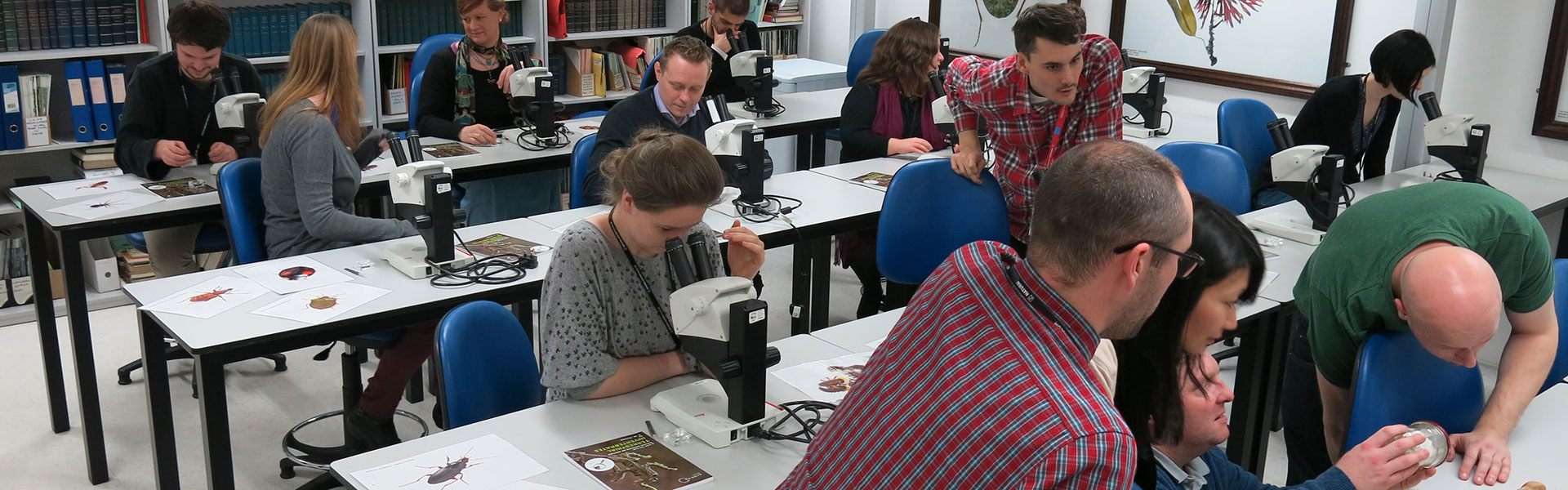 A group of people in the Angela Marmont Centre for UK Biodiversity learning to identify UK wildlife at a workshop
