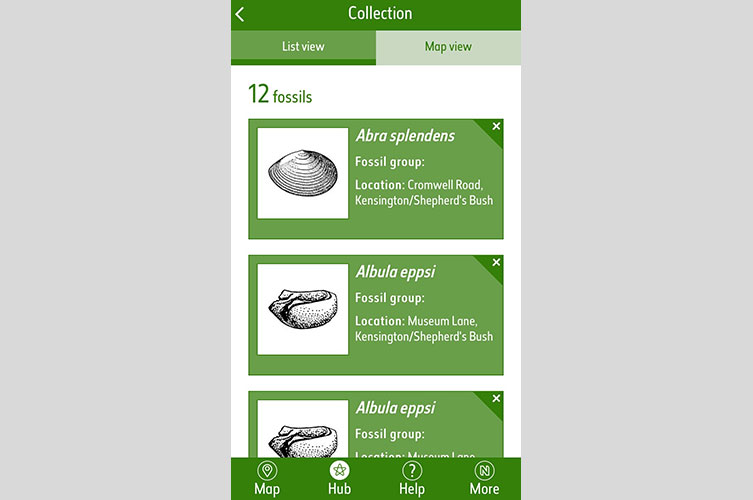 Fossil Explorer app | Natural History Museum