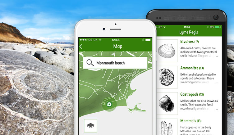 Screens from the Fossil Explorer app next to an ammonite on a beach