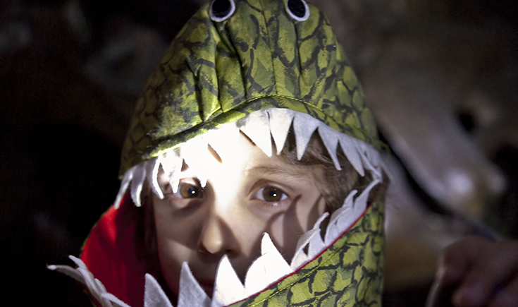 A Dino Snores visitor in themed fancy dress