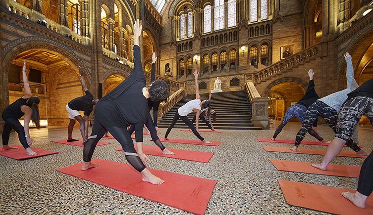 Yoga in Hintze Hall