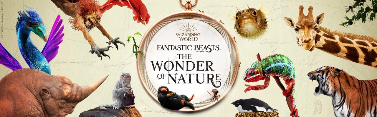Fantastic Beasts: The Wonder of Nature.