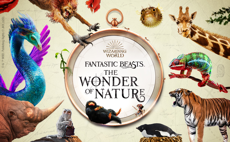 Fantastic Beasts™: The Wonder of Nature | Natural History Museum