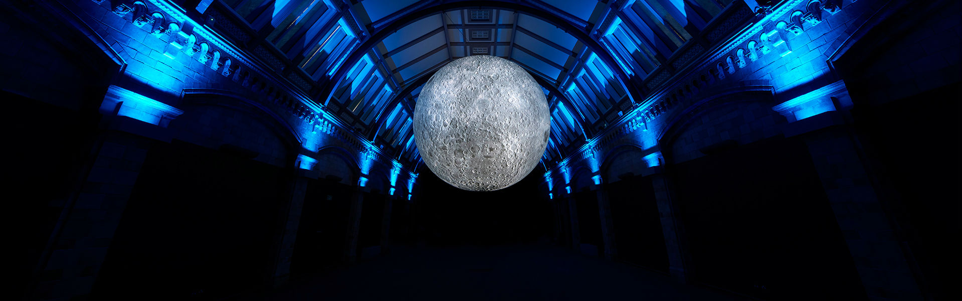 <p>Museum of the Moon</p>