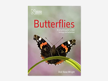 Butterflies: A Complete guide