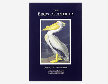 <h4>The Birds of America book</h4>