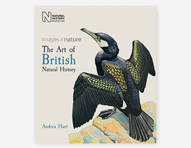 Book cover for The Bauer Brothers published by the Natural History Museum, Book cover for The Art of British Natural History published by the Natural History Museum