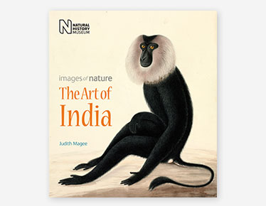 Book cover for The Art of India published by the Natural History Museum