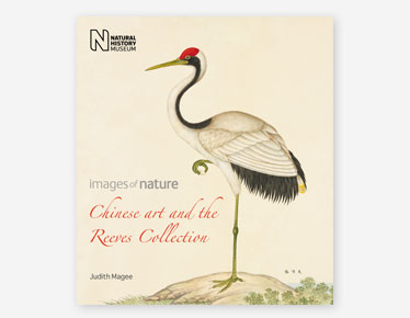 Book cover for Chinese Art and the Reeves Collection published by the Natural History Museum