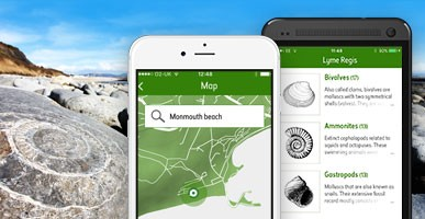 Fossil Explorer app in front of an ammonite on a beach