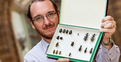 Max Barclay with a case of beetles collected by David Livingstone