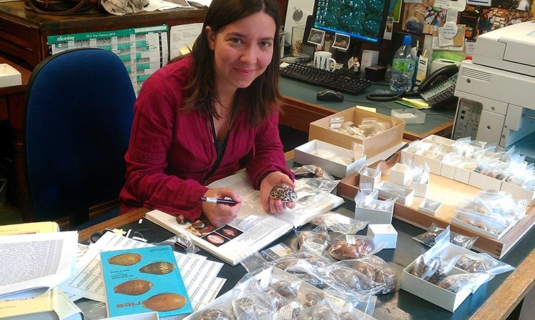 Andreia Salvador with specimen drawers