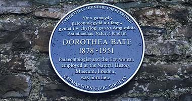 The blue plaque celebrating Dorothea Bate