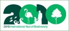 2010iyb-logo.jpg