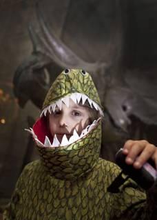 dino-snores-boy-costume.jpg