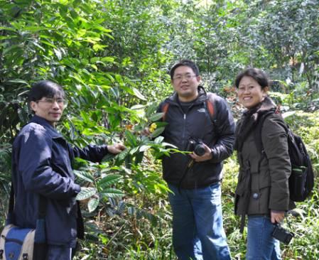 Guangxi_Bot_Garden_DSC_1036.jpg