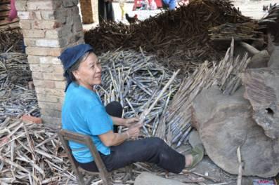 Sugarcane_YaoVillage.jpg