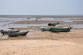 Fishing_boats_DSC_1831.jpg