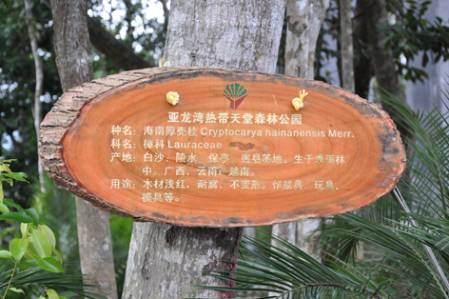 Tree_label_DSC_2361.jpg