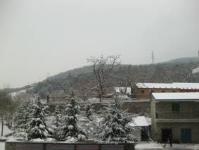 Snow_overnight_IMG_0659.jpg