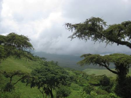 ngorongoro-conservation-area.jpg