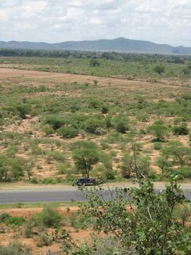 dry-savanna.jpg