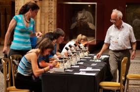 NHM-summer-after-hours-microfossil-workshop2.jpg