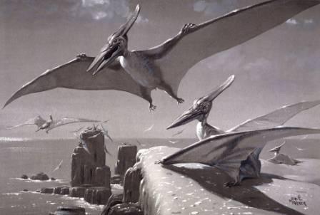 Pterosaur2.jpg