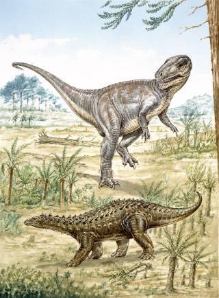 Lower Jurassic2.jpg