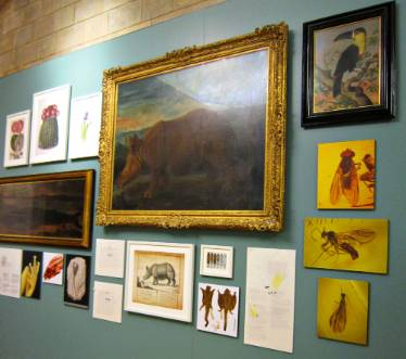 gallery-wall-1000.jpg