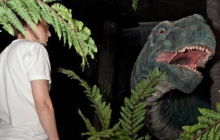 camarasaurus-ferns-1000.jpg