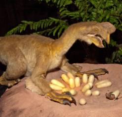 oviraptor-1000.jpg