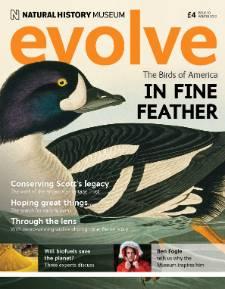 evolve10cover.jpg