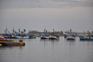 Paracas_fishing_boats_DSC_7761 (Mobile).JPG
