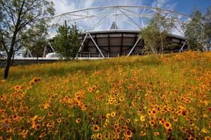 olympic-park-image.jpg