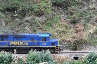 train_DSC_0539 (Mobile).JPG