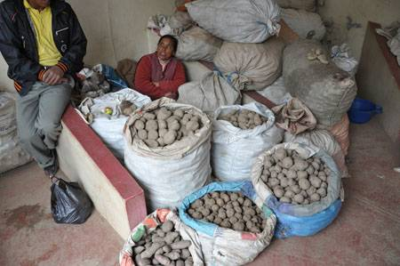 potatoes_DSC_1316.JPG