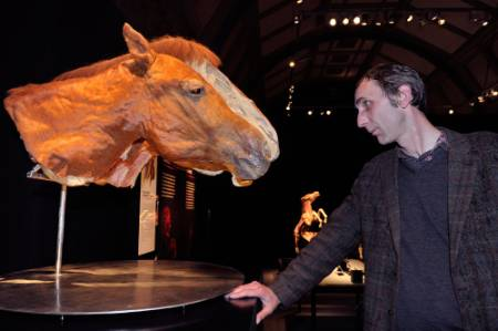will-self-horse-head-1000.jpg
