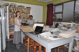 herbarium (Mobile).JPG