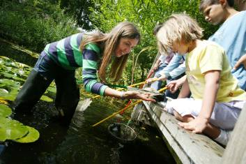 pond-dipping-1000.jpg