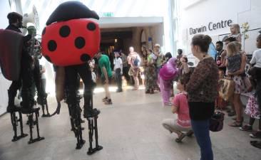 ladybirds-darwin-centre.jpg